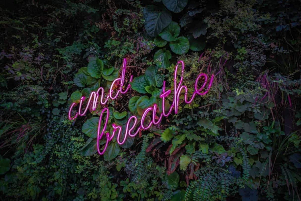 Breathwork Therapist Certification